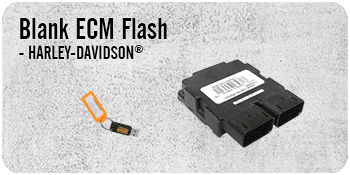 Blank ECM Flash
